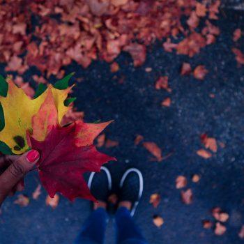 Заняття спортом восени
