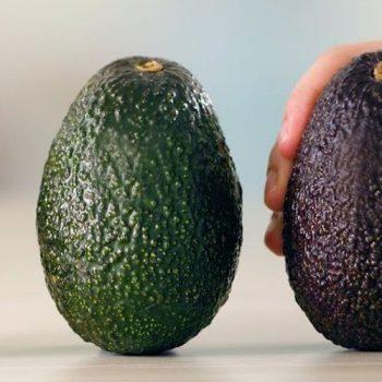 Авокадо: користь дивного фрукта та рецепти з ним